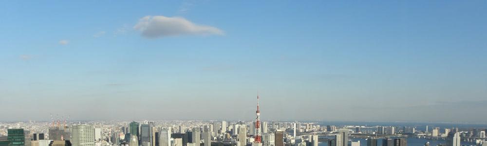 Tokyo. Sightseeing from Mori Tower, Roppongi