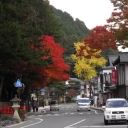 Read leaves along the street, Koyasan (Japan)